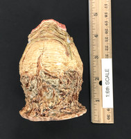 Xenomorph Eggs Set - Xenomorph Egg (Tan) (Closed)