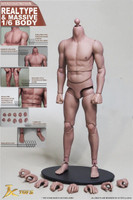 Strong Muscular Bodies: Asian Muscle Body (S-01) - Boxed Figure