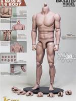 Strong Muscular Bodies: Western Muscle Body (S-02) - Boxed Figure