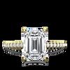 x1https://cdn3.bigcommerce.com/s-s2f88h5/products/339/images/64447/charlotte-emerald-v-angle__14191.1498324420.650.650.pngx2