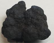 Vivianite nodule with sulphide.  Anglesea Victoria Australia 18014