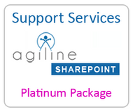 Support Services - Platinum Package