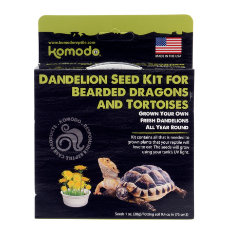 Komodo Dandelion Seed Kit