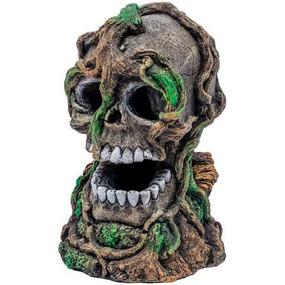 Tetra Glofish Skull