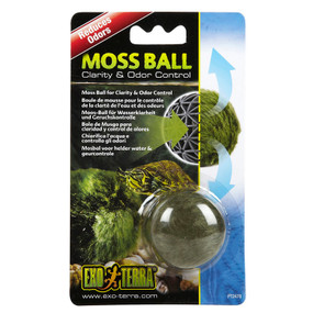Decorate your terrarium with Exoterra Moss Balls!