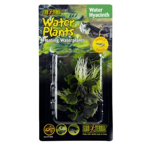 Exo Terra Water Hyacinth