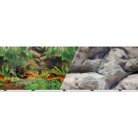 Nature's Aquarium Rain Forest For Tanks Up To 10 Gallon