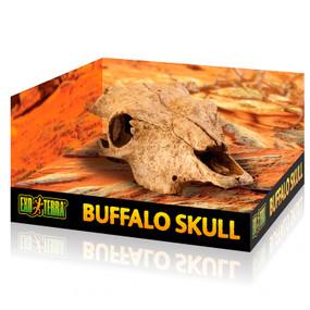Exo Terra Buffalo Skull Hiding Place