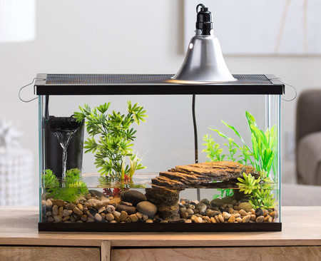5.5 gallon glass tank with screen cover