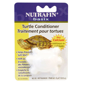 Get the turtle health care you need at our turtle store.