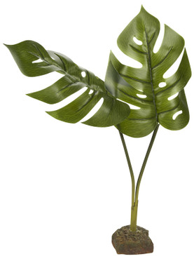 Exo Terra Philodendron Plant