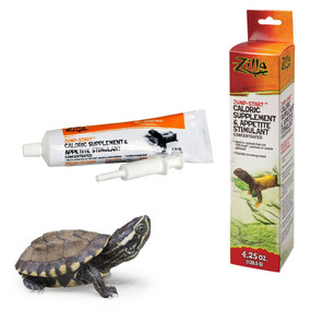 Cilla Jump Start for Turtles.