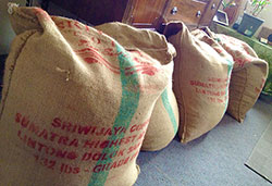 Sacks of coffee beans from Sumatra