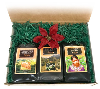 ##3 delicious coffees in a decorative tray##