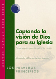 Catching God's Vision for the Church (Spanish)