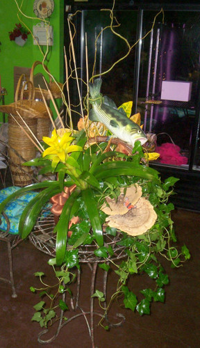 Bromeliad Plants, Ivy and Decorative Fish with Curly WIllow