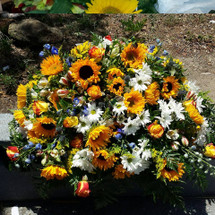 Over 20 Sunflowers, White Daisies,  Dozen Roses, Blue Delphinum and Accent Flowers. Full and Lush Casket Spray.