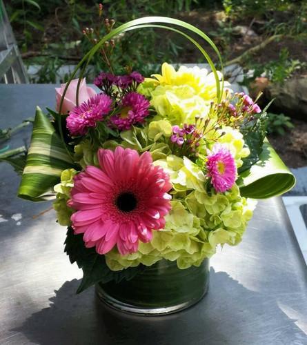 Gerber Fun from The Bloom Closet Florist in Augusta, GA