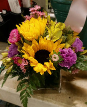 Sunflowers in Bloom at The Bloom Closet Florist in Martinez, GA
