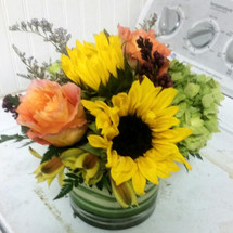 Designers Choice Short Cylinder from The Bloom Closet Florist in Augusta, GA.