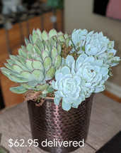 Succulent Vase ONE ONLY!!!