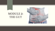 Module #2 - Gut (33:43)