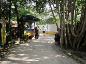 roatan-private-accessible-cruise-excursion013.png