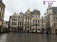 Private Accessible 3 hour Brussels Guided Tour