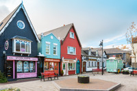 Private Accessible 7 Hour Kinsale, Blarney Castle and Shopping Tour