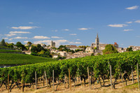 Private Accessible 6 Hour UNESCO St. Emilion Village and Wine Tasting Tour