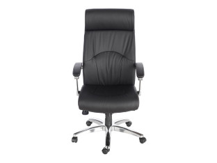 Friant Madison Executive Chair