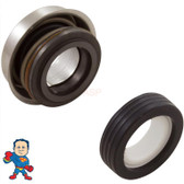 Pump Seal (Better) PS-3865 Viton Like a PS-1000 fits Most Waterway Tubs