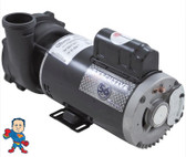 "Pump, Waterway Executive, 5.0hp, 230v, 2-spd, 56 frame, 2"" X 2"""