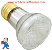 Replacement Bulb, R20, Flood Lamp, 100w (60w Halogen), 115v, Edison Style Screw in