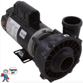 "Pump, Waterway Executive, 1.5hp, 115v, 2-spd, 48fr, 2"" x 2"""
