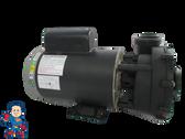 "WUA400-II 56Fr Intertek LX Pumps 2"" X 2"" 4.0HP 2 Speed 230V Video How To"