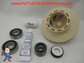 Spa Hot Tub Pump 2.5HP Impeller (2) Bearing & Seal Kit May 2009+ Jacuzzi® Premium or Sundance® Video How To