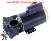 "Spa Hot Tub 48Fr Guangdong LX Pump 2"" X 2"" 1.0HP 2 Speed 115V WUA"