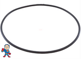 """Power Right Wet End, Face, O-Ring, Wet End , 6"""" Inside Diameter, 1/8"""" Thick"""