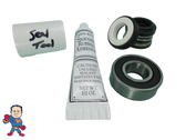 Jacuzzi (4) Mount Piranha Pump Seal Parts Kit with Silicon & (1) Bearing