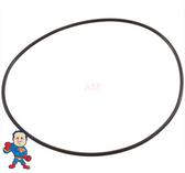 "O-Ring, Aqua-Flo, FMVP, FMHP, FMCP, CMHP, CMCP, 1-1/2"", Face to Volute O-Ring"