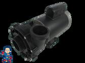 "Watkins Spa Hot Tub 56Fr intertek LX Pump 2"" X 2"" 2.0HP 2 Speed 230V 1019801-03 Vendor Code 3536 Wavemaster 8200"