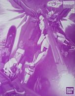 Destiny Impulse Gundam (MG) /P-BANDAI EXCLUSIVE\