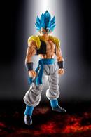 S.H. Figuarts Super Saiyan God Super Saiyan Gogeta (Dragon Ball Super: Broly) **PRE-ORDER**