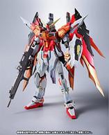 Destiny Gundam (Heine Custom) {Metal Build]