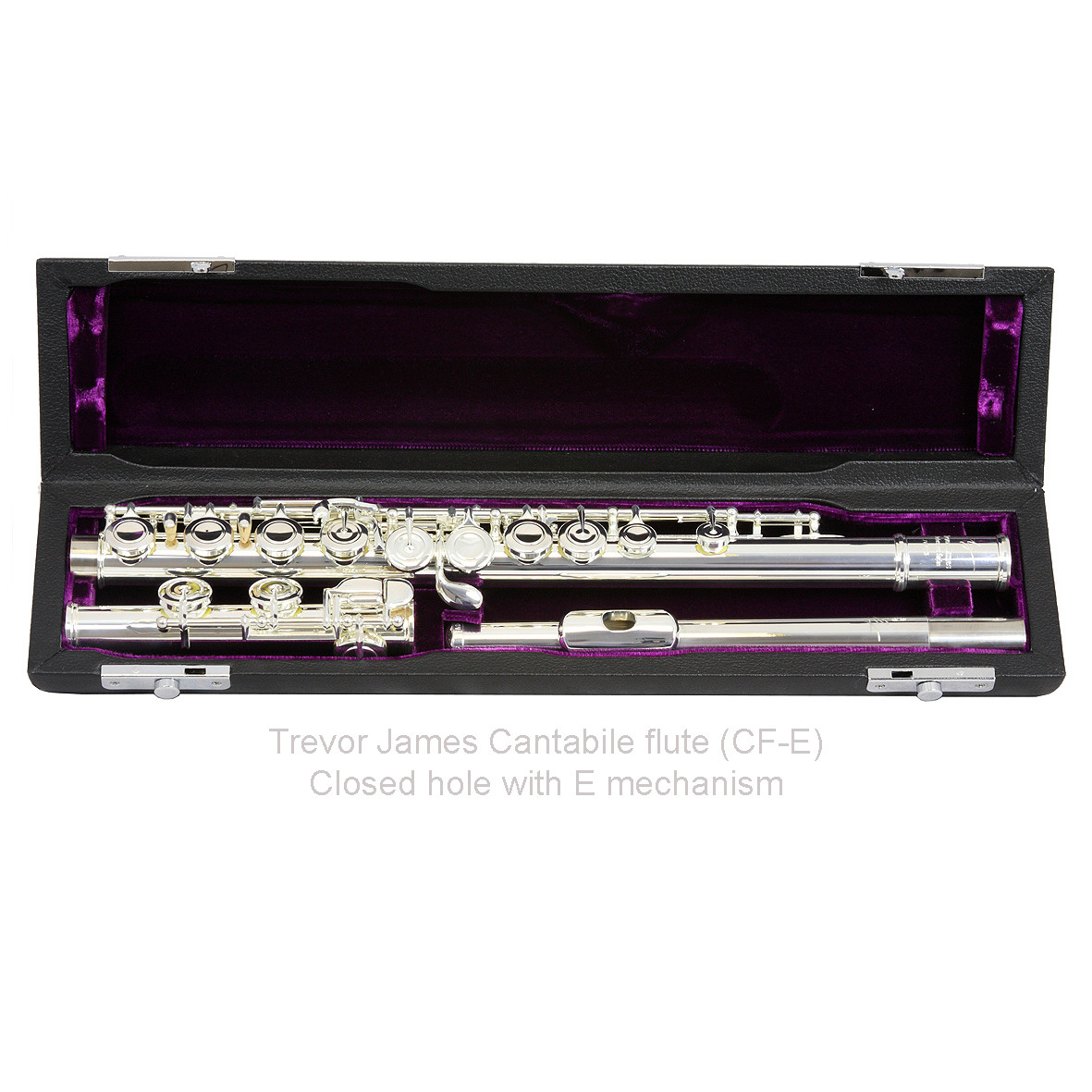 TREVOR JAMES CANTABILE FLUTE IN CASE
