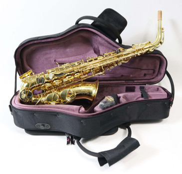 TREVOR JAMES SR ALTO SAXOPHONE - GOLD
