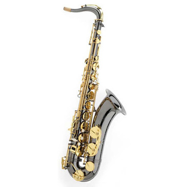 TREVOR JAMES SR TENOR SAXOPHONE - BLACK/ GOLD 384SR-BK