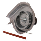 ICP 1178421 Replacement Inducer Motor Assembly, Packard 66421