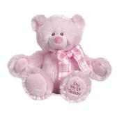 "Ganz Baby My First Teddy Pink 8"" BG2765"